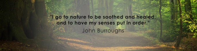 naturetherapy